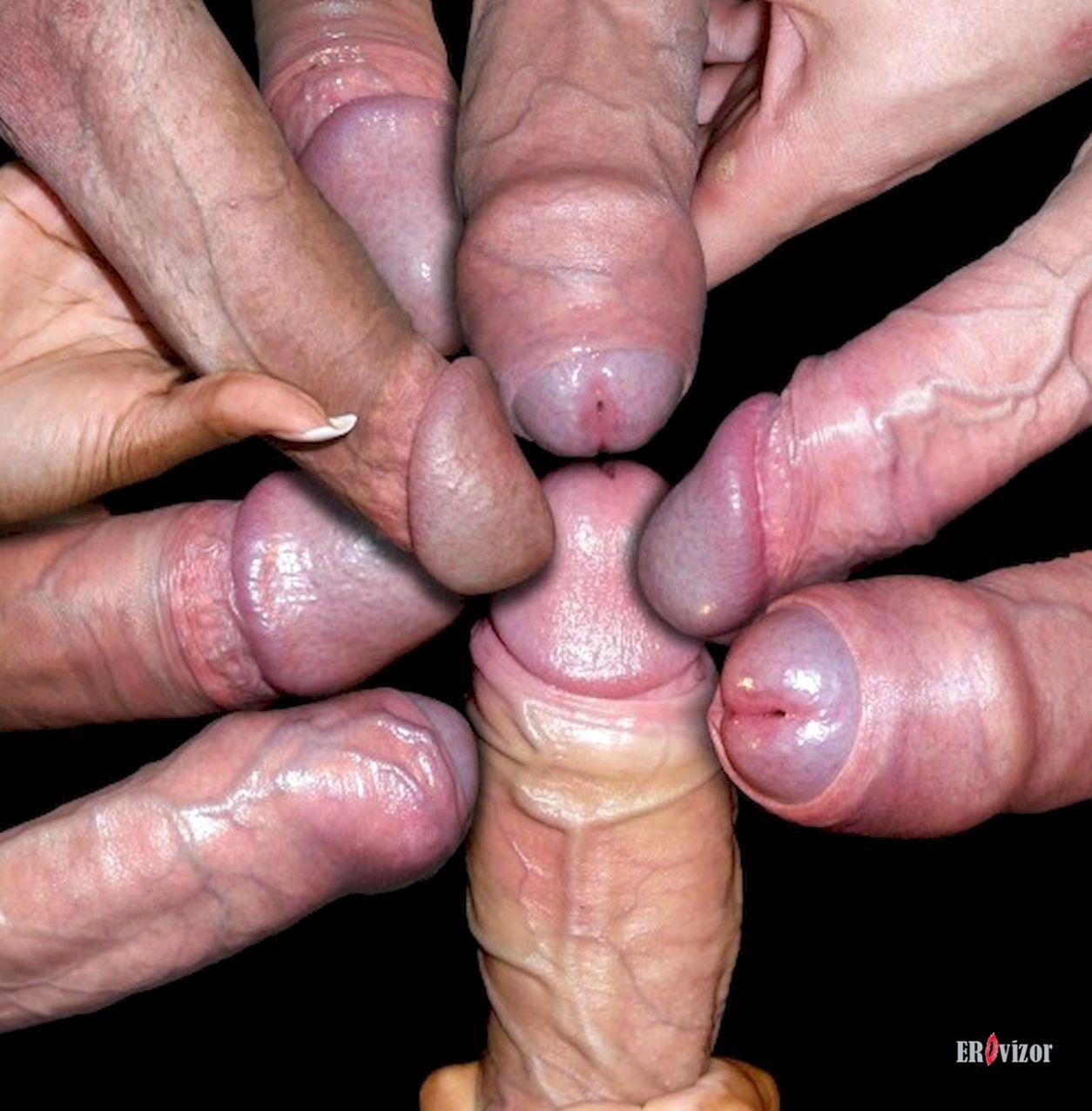 Мужики мерятся членами
