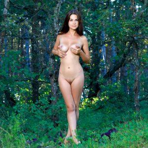 голая брюнетка позирует в лесу