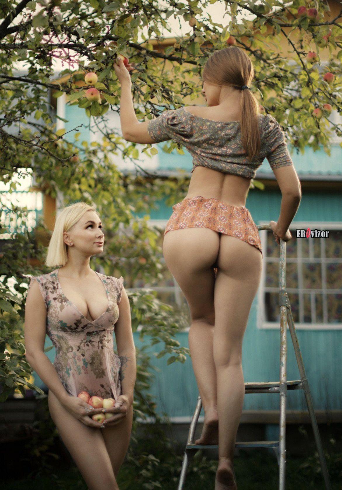 эро фото девушки в саду собирают яблоки